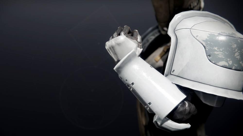 Forbidden Visage Gloves Destiny 2